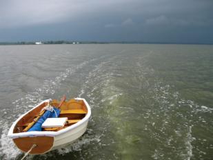sallan-spin-sheet-ourunning-storm